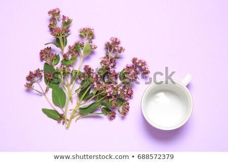 beker · thee · bloemen · oude · houten - stockfoto © illia