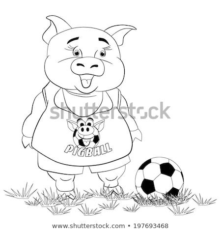 Dier spelen voetbal kleurboek cartoon Stockfoto © izakowski