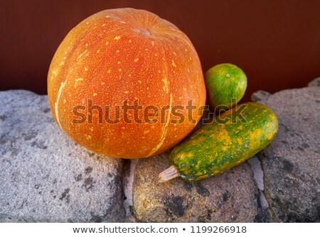 Pompoenen stilleven outdoor galicië Spanje oranje Stockfoto © lunamarina