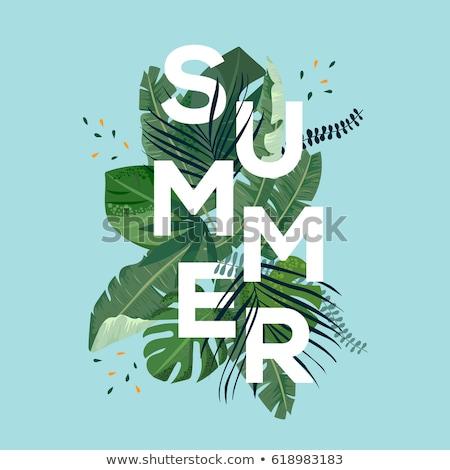 Caliente día de verano saludo resumen marco vector Foto stock © robuart