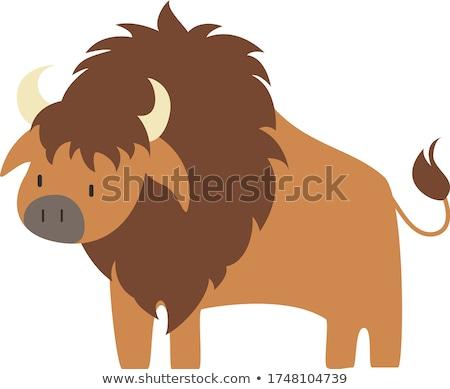 Cartoon Buffalo Smiling Stock photo © cthoman