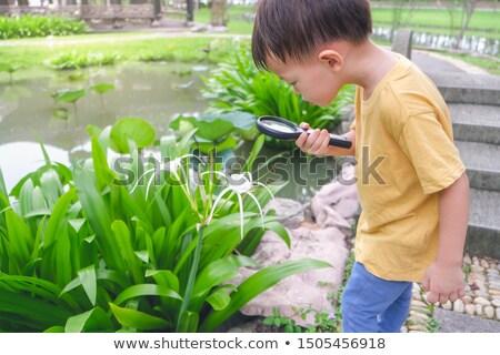 gigante · flor · ilustração · crianças · brincando · criança · menino - foto stock © colematt