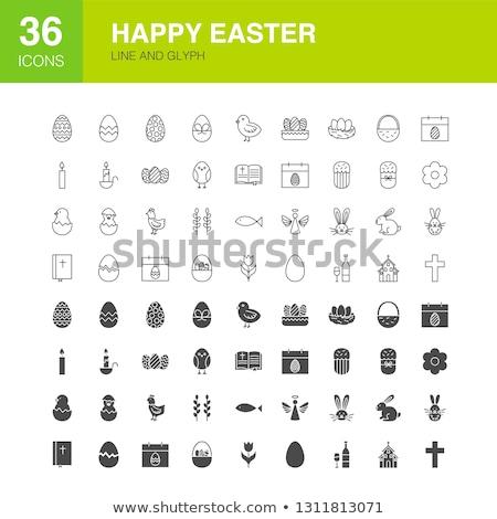 Easter Line Web Glyph Icons Stock photo © Anna_leni