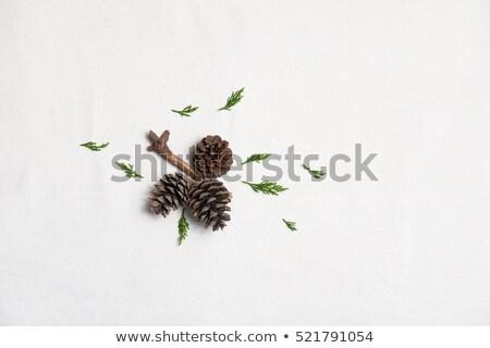 Weihnachten hellen blau Ball Stiefel Schnee Stock foto © Melnyk