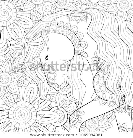 vector unicorn pattern coloring page stock photo © VetraKori