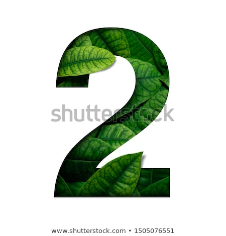 Colorful paper cut out font Number 2 TWO 3D Stock photo © djmilic