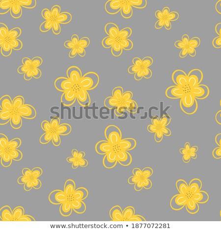 Womens International Day, Yellow Daisy Vector Stock photo © robuart