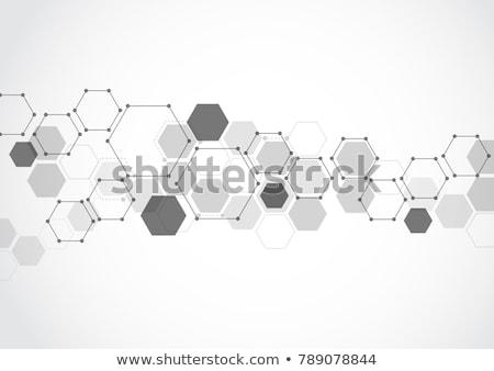 medical science banner in hexagonal pattern design Stock photo © SArts