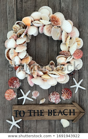 Heart Shaped Cockle Shell Wreath Stock photo © marilyna