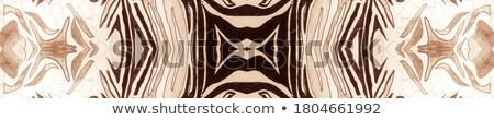 Mandala patronen bruin illustratie abstract kleur Stockfoto © bluering