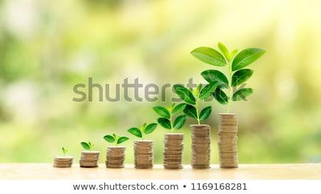 Financière croissance illustration une homme d'affaires argent Photo stock © pkdinkar