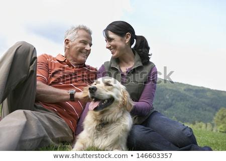 犬 · 白 · 背景 · 動物 · ほ乳類 - ストックフォト © eriklam