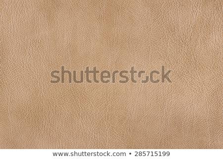 Pink leather texture stock photo © homydesign