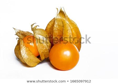 Friss finom érett stúdiófelvétel gyümölcs narancs Stock fotó © ElinaManninen
