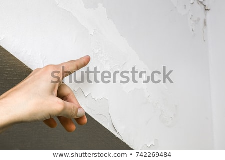 woman near cracked wall Stock photo © chesterf