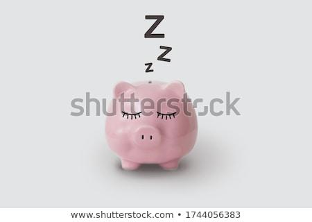 geld · niet · slaap · honderd · dollar · donkere - stockfoto © grechka333