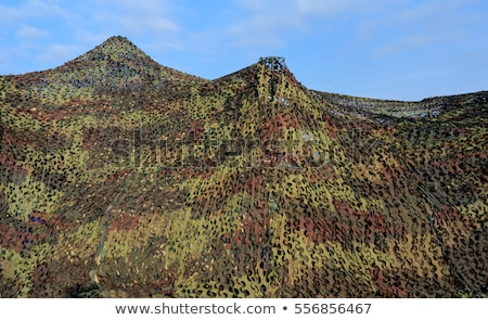 Camouflage net isolated Stock photo © michaklootwijk