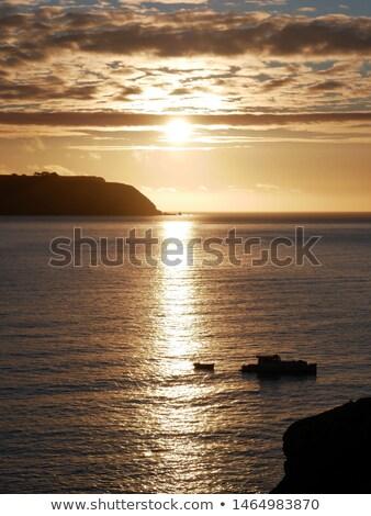 Gün batımı ışıklar bakıyor şehir Yeni Zelanda güneş Stok fotoğraf © rghenry