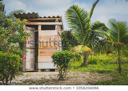 wooden outdoors toilet stock photo © leventegyori
