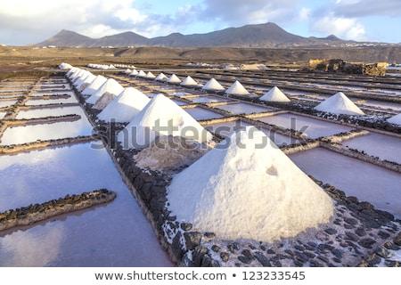 zout · raffinaderij · water · landschap · witte · patroon - stockfoto © meinzahn