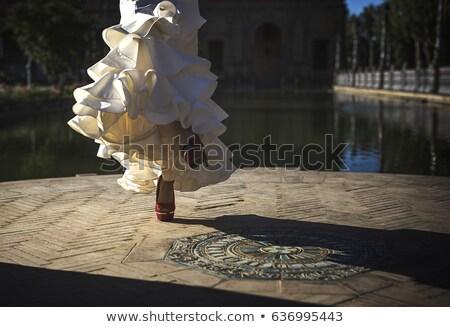Portre güzel flamenko dansçı genç müzik Stok fotoğraf © konradbak