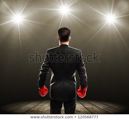 businessman with boxing gloves rear view stock photo © cherezoff