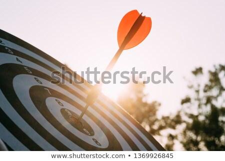 dart arrow hitting in the target center of dartboard Stock photo © klss