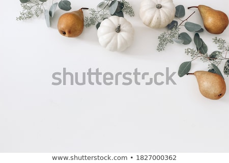 pumpkins on the table stock photo © user_11224430
