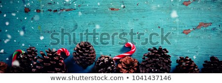 Pine cone and candy cane arranged on wooden plank Stock photo © wavebreak_media