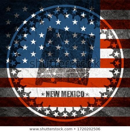 Bayrak New Mexico circles model Amerika Birleşik Devletleri yerel Stok fotoğraf © MikhailMishchenko