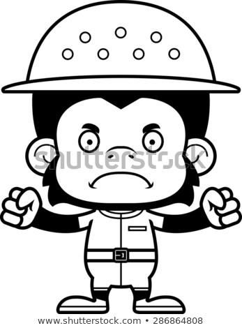 Rajz mérges csimpánz néz grafikus őrült Stock fotó © cthoman