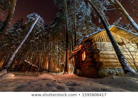 Scène houten hut nacht illustratie Stockfoto © colematt