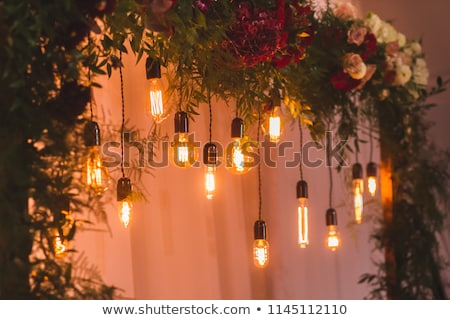 Wedding reception decoration with different electric edison lamps and fresh flowers, rustic style Stock photo © ruslanshramko