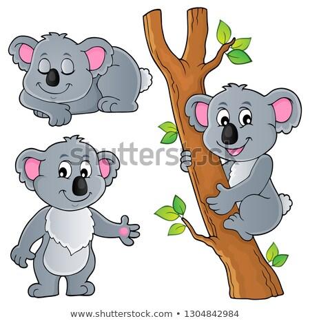koala · cartoon · albero · foglia · giocattolo · sonno - foto d'archivio © clairev