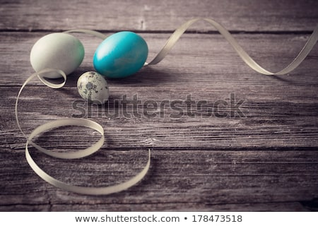 Quail  Easter eggs on blue background with willow branch.  stock photo © Illia