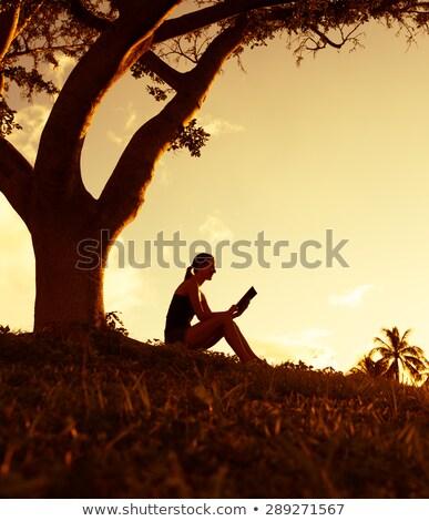 Woman Sitting Under Orange Tree and Reading Book Stock fotó © robuart