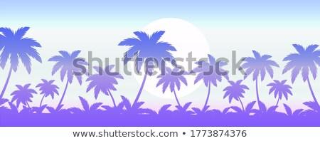 Nyári szabadság illusztráció édenkert sziget trópusi pálmafák Stock fotó © articular