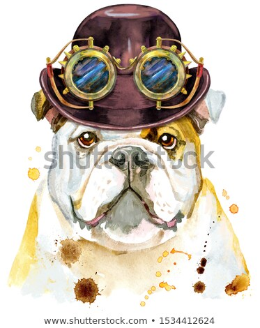 Aquarel portret bulldog hoed bowler steampunk Stockfoto © Natalia_1947