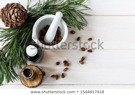 Fenyőfa tűk fehér fából készült sekély mélységélesség Stock fotó © AGfoto