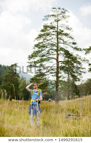 Young man observing during hiking on a sunny day Stock photo © boggy
