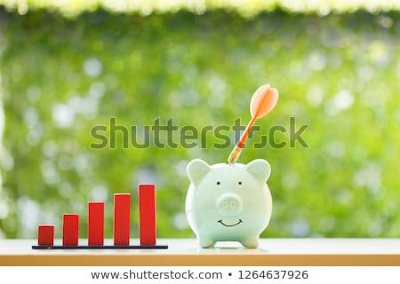 Piggy bank vermelho dardos alvo secretária rosa Foto stock © AndreyPopov