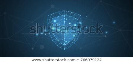 Data shield Stock photo © Andreus