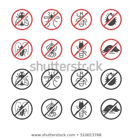 防除 サービス サニタリー 国内の 害虫 ストックフォト © RAStudio