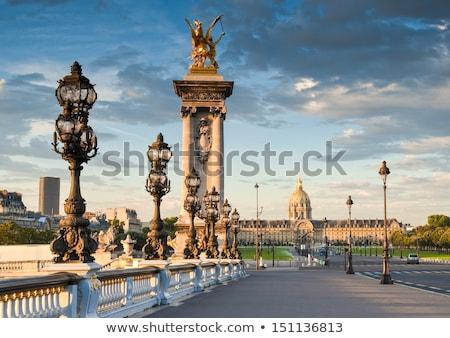 extravagant bridge in Paris Stock photo © ilolab
