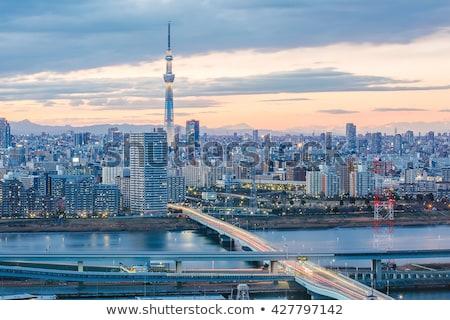 Város park sziluett Tokió Japán Stock fotó © travelphotography