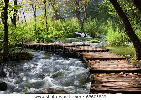 Stream and wooden bridge Stock photo © simply