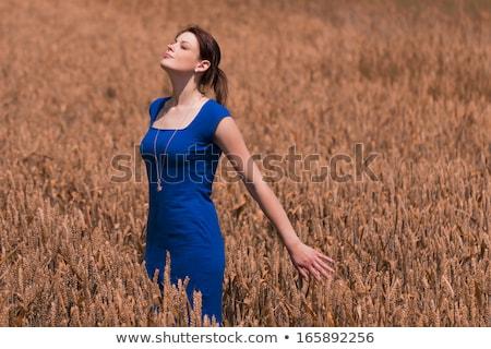 mujer · azul · vestido · retrato · atractivo · aislado - foto stock © marylooo