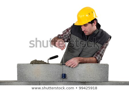 tradesman using a plumb bob stock photo © photography33