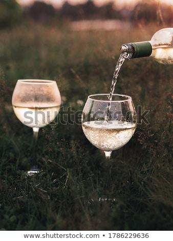 wijn · gras · verf · zomer · drinken · diner - stockfoto © BrunoWeltmann