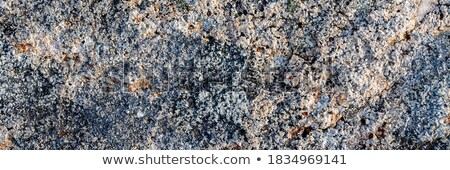 Granite with lichen stains - stone background Stock photo © pzaxe